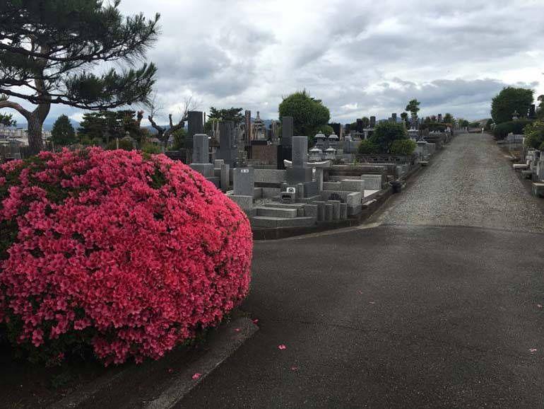 八王子市営 緑町霊園 季節の花が美しい墓域
