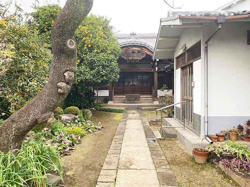 蓮乗院 立派な寺院