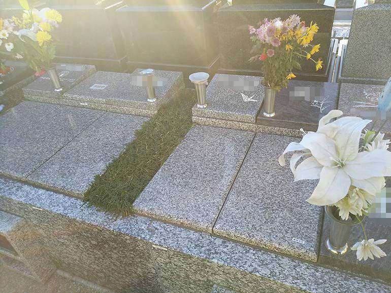 公園墓地 瑠璃光苑 日当たりの良い樹木葬-ガーデンタイプ4型