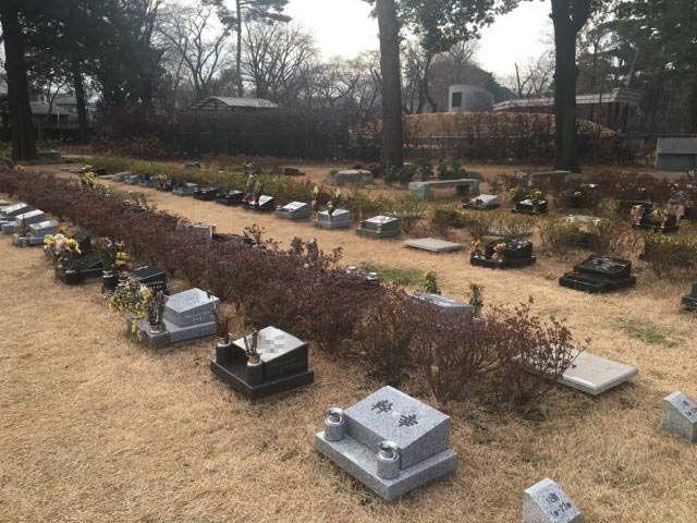 都立 小平霊園 芝生墓所