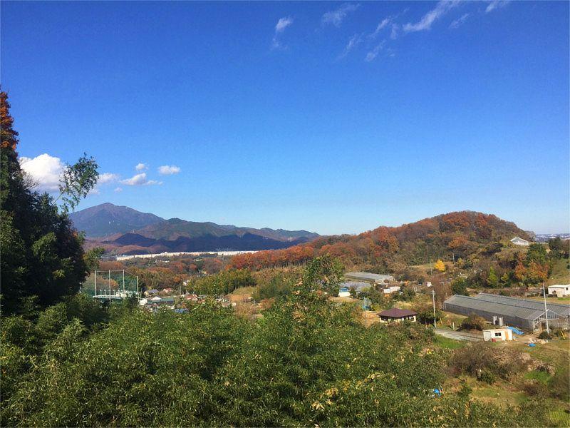 メモリアル富士見霊園 自然に囲まれた静かな立地