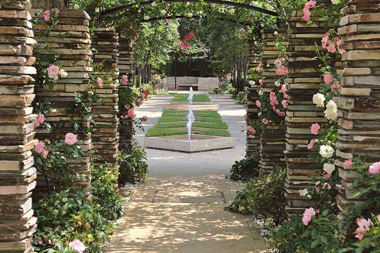花小金井ふれあいパーク バラのアーチからの眺め