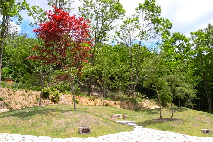 森の国墓苑 紅葉の樹木葬