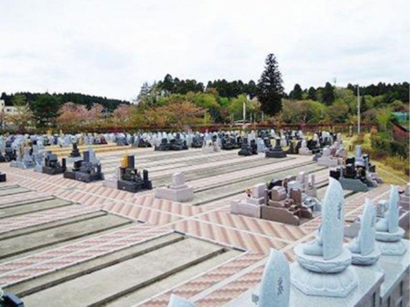 緑に囲まれた霊園の全景