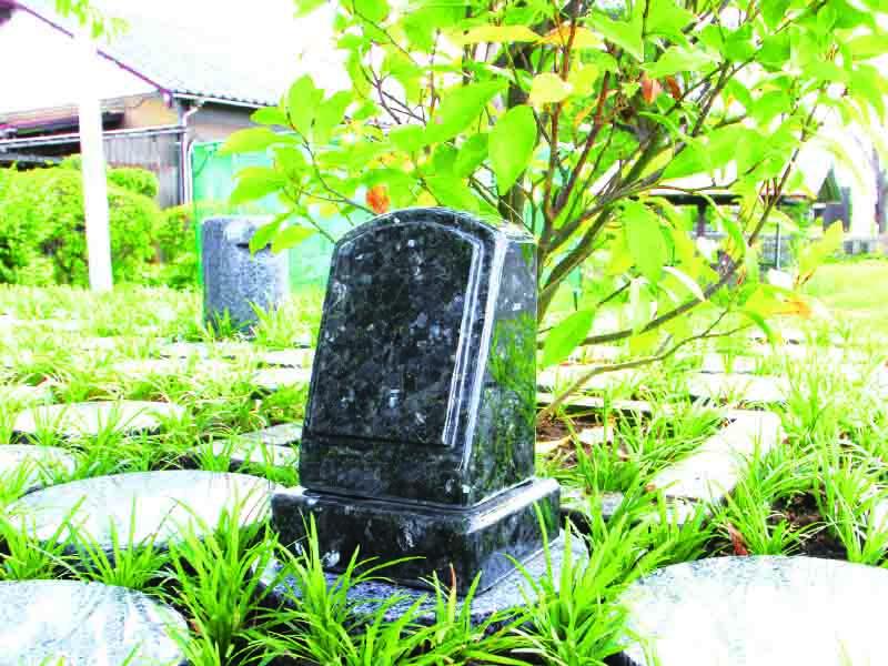 爽やかな緑に囲まれた樹木葬