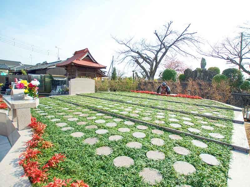 メモリアルすぎと 用中寺 永代供養墓・樹木葬 自然に帰れる樹木葬