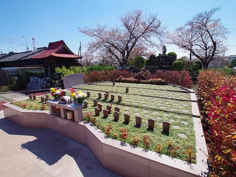 メモリアルすぎと 用中寺 永代供養墓・樹木葬 四季折々の木々に囲まれた樹木葬
