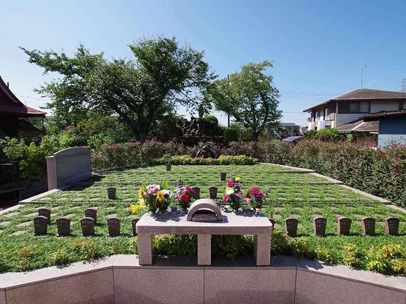 メモリアルすぎと 用中寺 永代供養墓・樹木葬 あたたかな雰囲気の樹木葬