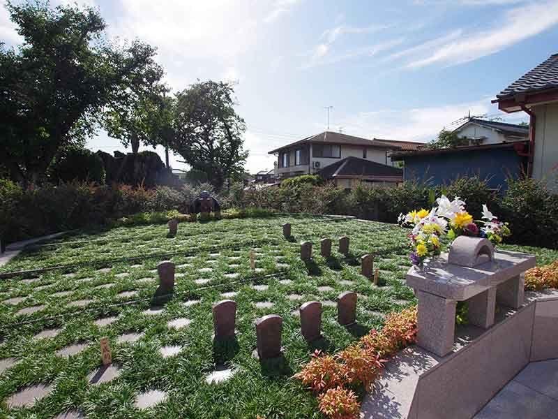 メモリアルすぎと 用中寺 永代供養墓・樹木葬 光あふれる樹木葬