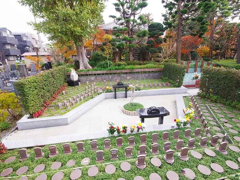高應寺墓苑 永代供養墓・樹木葬 永代供養付き樹木葬