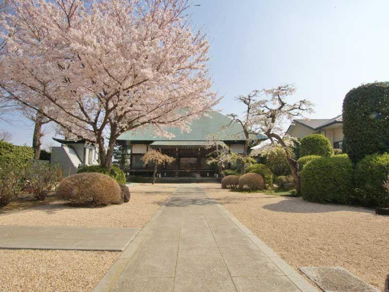 浄安寺墓苑 春には桜の咲く境内
