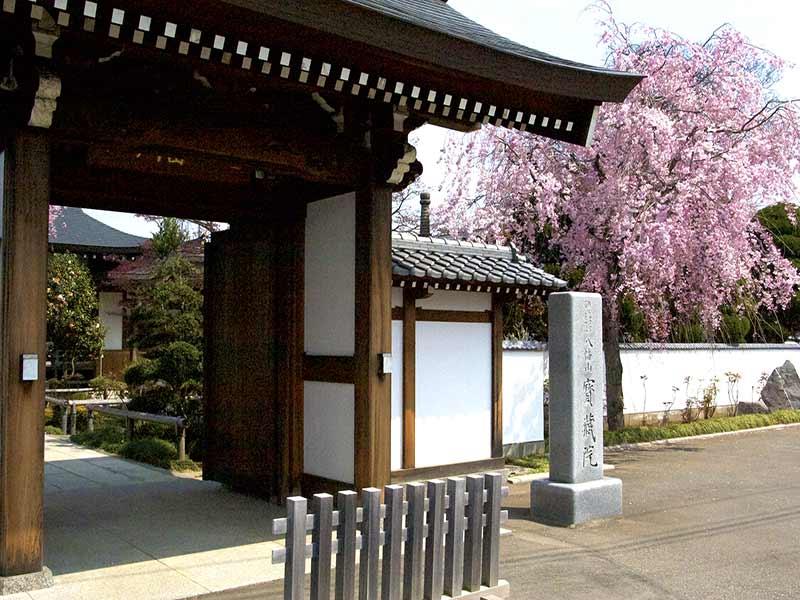 宝蔵院墓苑 永代供養墓・樹木葬 春には桜のきれいな山門