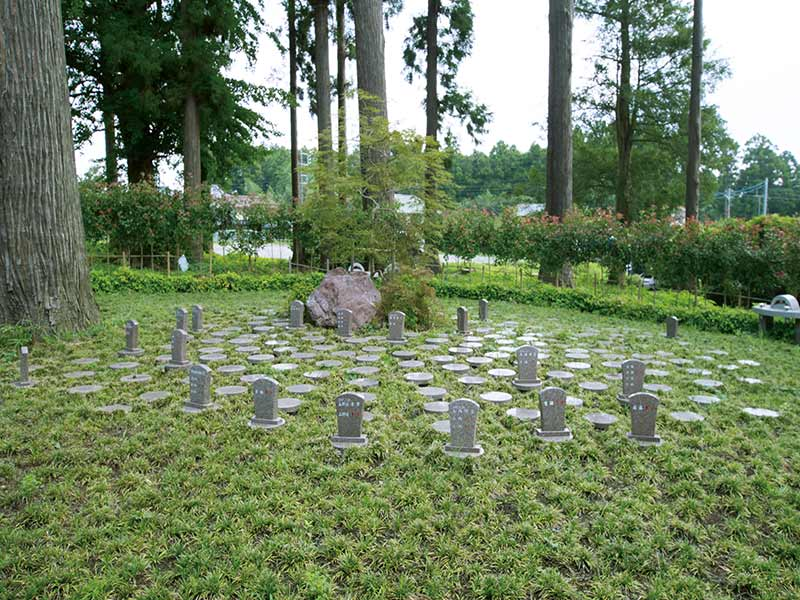 平野山髙藏寺 高倉観音 永代供養墓・樹木葬