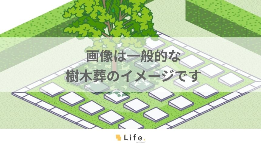 樹木葬のイメージ画像