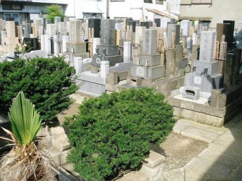専念寺 和型墓石