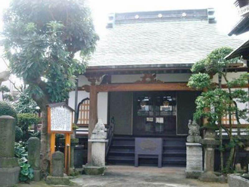 専念寺 日の当たる本堂