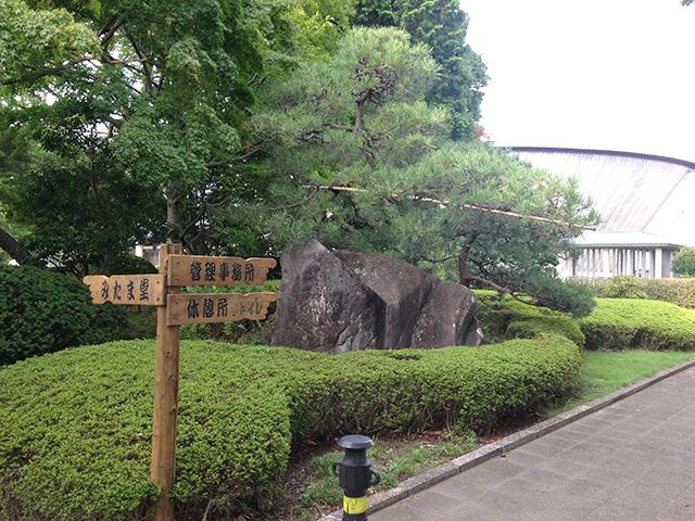 都立 多磨霊園 自然に溶け込む木の案内板