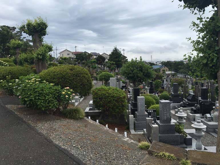八王子市営 緑町霊園 手入れされた植栽が美しい墓域