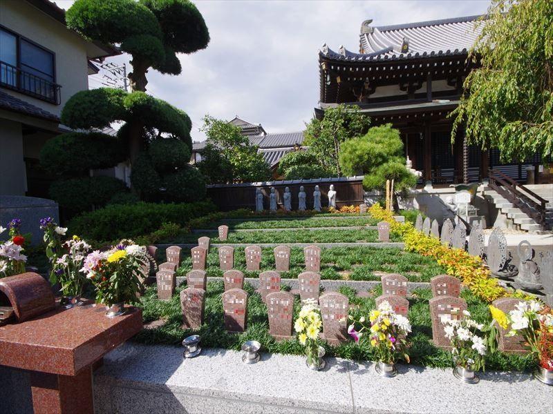 圓福寺墓苑(円福寺墓苑) 永代供養墓・樹木葬 日当たりのよい樹木葬