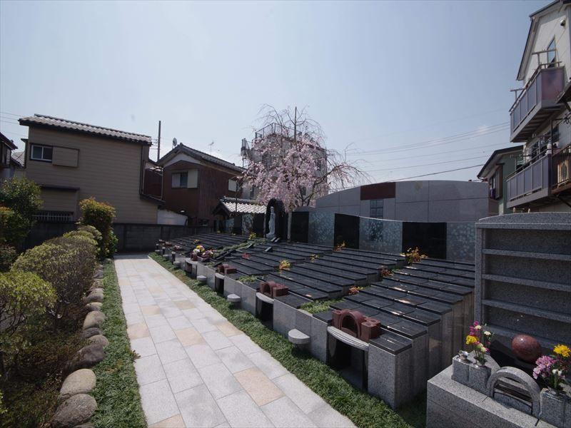 眞乗寺東墓地 永代供養墓・樹木葬 日光に包まれる樹木葬