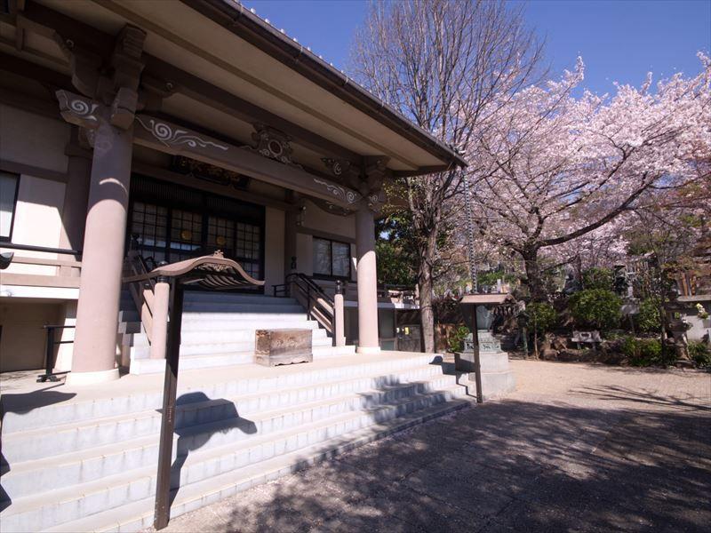 一乗院 永代供養墓・樹木葬 春には桜が咲く境内