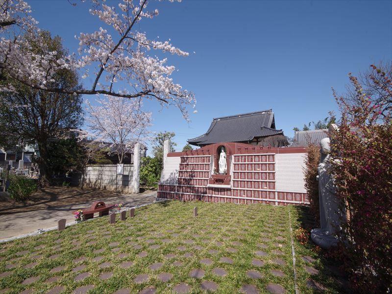 放光寺 永代供養墓・樹木葬 桜と仏様が見守る樹木葬