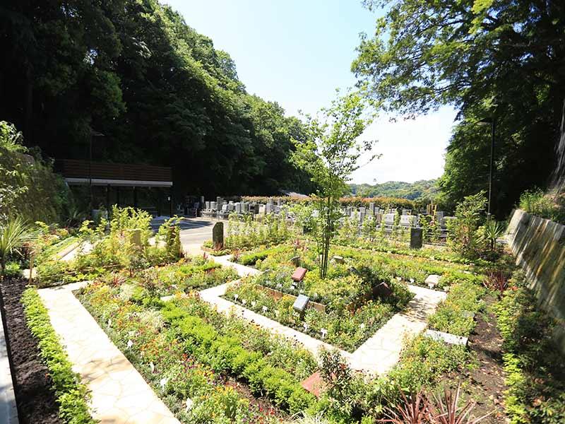 鎌倉やすらぎの杜 緑豊かな園内風景