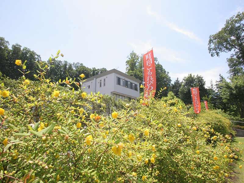 町田こもれびの杜霊苑 日当たりが良く緑豊かな霊園風景①