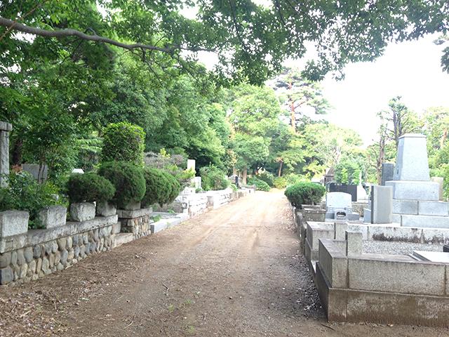 都立 多磨霊園 木々が多く明るい緑地霊園