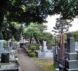宝泉寺の墓所景観
