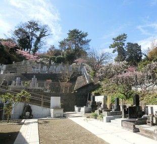 宝善院の墓所景観