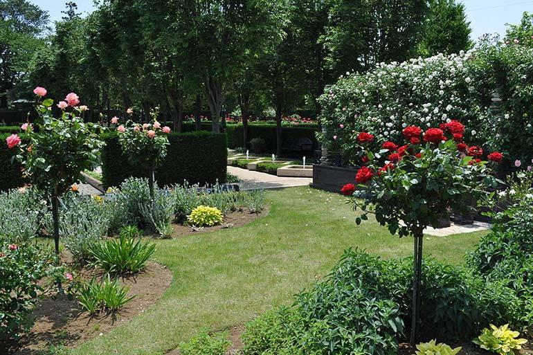 花小金井ふれあいパーク 花とたくさんの緑に囲まれたパーク内