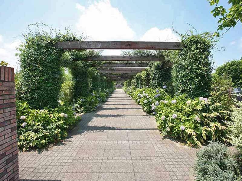 川越フォーシーズンメモリアル 永代供養墓「時のしらべ」 緑に覆われたバーゴラ