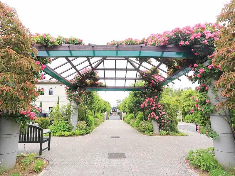 海老名フォーシーズンメモリアル 永代供養墓「花ことば」 花と緑が美しい休憩スペース
