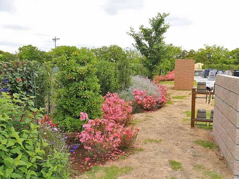 彩光浄苑 苑を包む木や草花