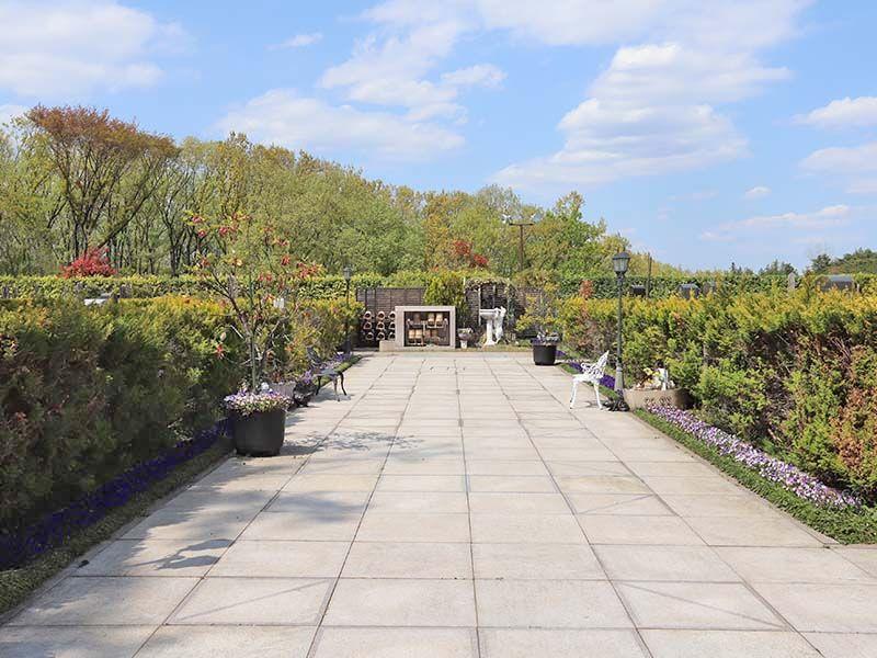 新ゆり天望の丘墓苑 植栽やベンチがある広い参道
