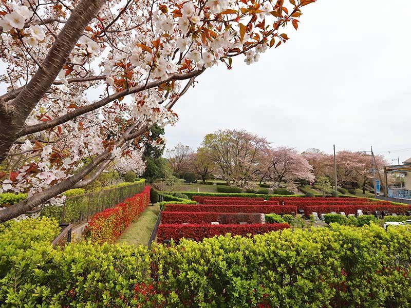 アドミール座間 四季折々の花が楽しめる霊園