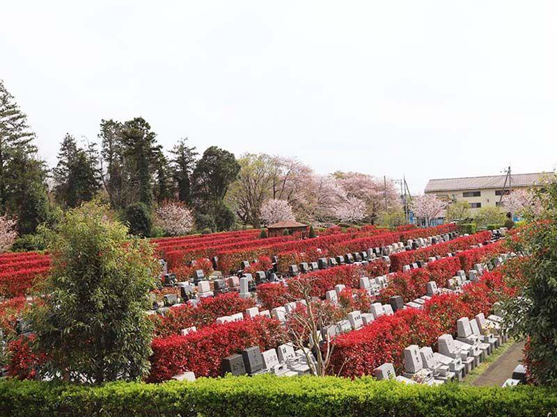 アドミール座間 自然と一体化したような墓域