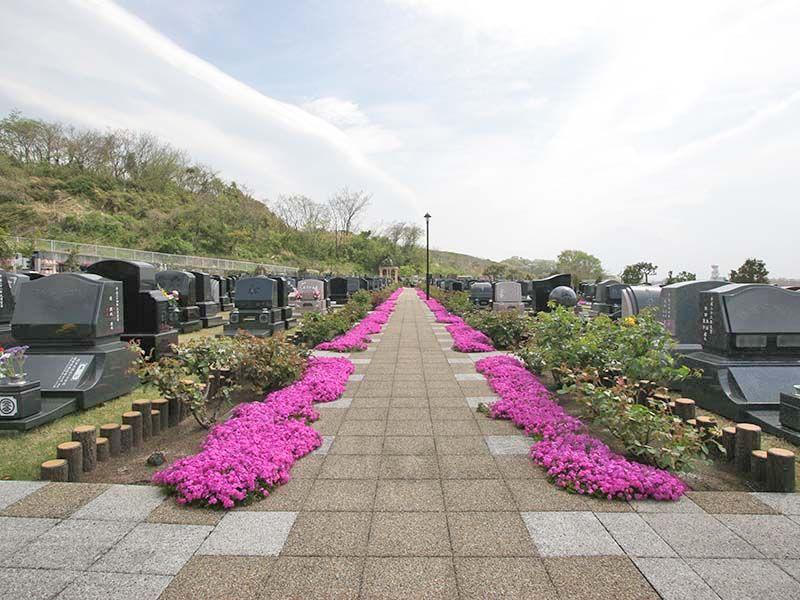 メモリアルパーク花の郷墓苑 厚木宮の里 芝桜に沿うようなゆとりある参道