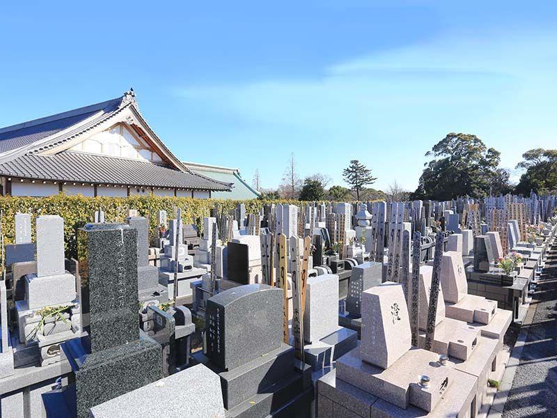 大本山 總持寺(総持寺) 日の当たる墓域