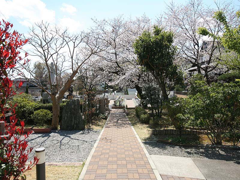 染谷の里 大宮四季彩霊苑 メイン参道にある自然のアーチ