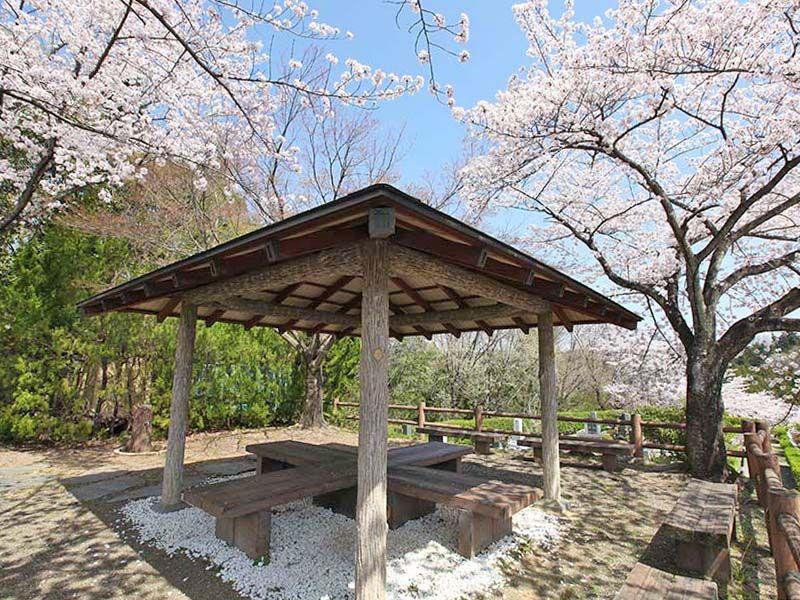 地産霊園 桜に囲まれた屋根付き休憩ベンチ
