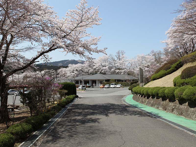 地産霊園 春には桜に囲まれる駐車場