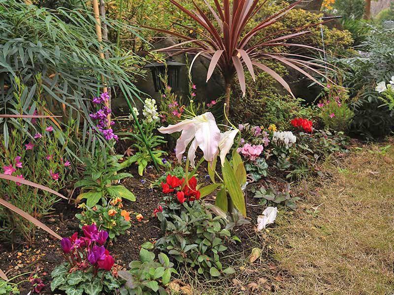 高輪墓苑 正満寺「ふれあいの碑」 四季折々の自然が楽しめる苑内