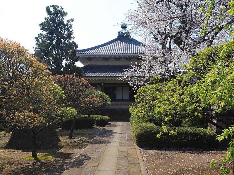 日曜寺墓苑 自然に囲まれた本堂