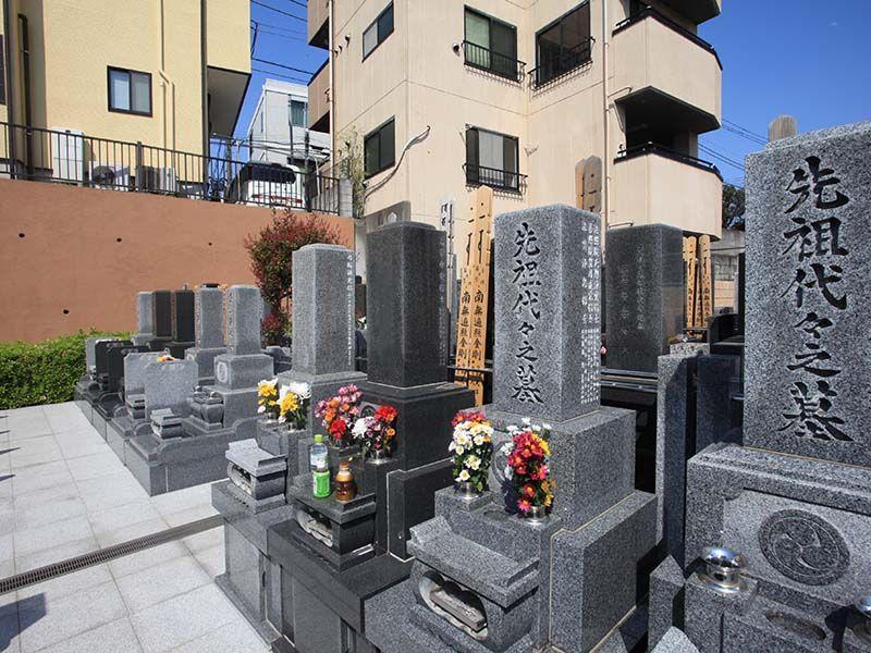 日曜寺墓苑 日当たりが良い墓域