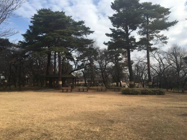都立 小平霊園 自然を感じられる休憩スペース