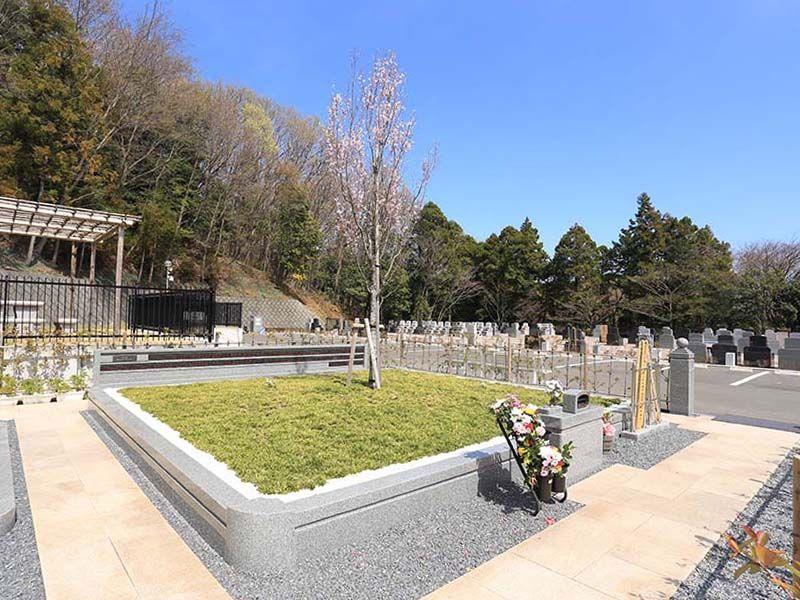メモリアルパーク厚木ふるさとの丘 自然に帰る樹木葬