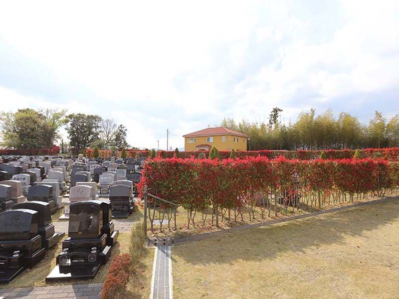 メモリアルパーク藤沢 開放的な園内