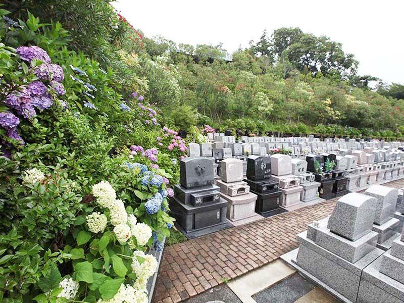 南大沢霊園の季節の花が美しい墓域①